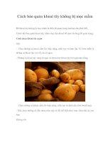 Tài liệu Cách bảo quản khoai tây không bị mọc mầm doc