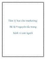 Tài liệu Tâm lý học cho marketing: Hé lộ 9 nguyên tắc trong hành vi con người pot