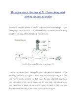 Tài liệu Thí ngiệm của A. Hershey và M. Chase chứng minh ADN là vật chất di truyền doc