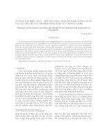 Tài liệu TƯƠNG TÁC KIỂU GEN - MÔI TRƯỜNG, TÍNH ỔN ĐỊNH NĂNG SUẤT VÀ CÁC YẾU TỐ CẤU THÀNH NĂNG SUẤT CỦ Ở KHOAI LANG doc