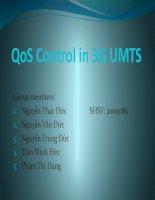 Tài liệu QoS Control in 3G UMTS (final) docx