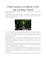 Tài liệu Chiêm ngưỡng con đường cổ tích đẹp nao lòng ở Brazil ppt