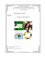 tiểu luận xăng sinh học