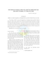 Tài liệu KHẢ NĂNG SỬ DỤNG VI SINH VẬT LÀM TÁC NHÂN SINH HỌC SẢN XUẤT ETHANOL TỪ THÂN CÂY NGÔ pptx