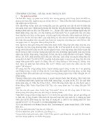 Tài liệu Văn hóa Việt Nam thế kỷ X - XIV pdf