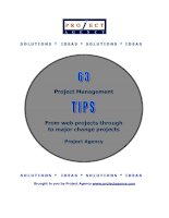 Tài liệu Project Management Tips From web projects through to major change projects docx
