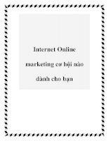 Tài liệu Internet Online marketing cơ hội nào dành cho bạn ppt