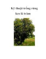 Tài liệu Kỹ thuật trồng rừng keo lá tràm doc