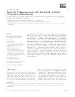 Tài liệu Báo cáo khoa học: Branched N-glycans regulate the biological functions of integrins and cadherins doc