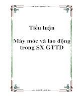 Tài liệu Tiểu luận Máy móc và lao động trong SX GTTD pptx