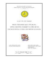 Tài liệu Luận văn:PHÂN TÍCH HIỆU QUẢ TÍN DỤNG CÔNG THƯƠNG NGHIỆP VÀ TIÊU DÙNG TẠI NGÂN HÀNG Á CHÂU CHI NHÁNH AN GIANG doc