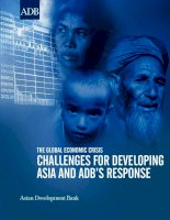 Tài liệu The Global economic crisis challenGes for DevelopinG asia anD aDb's response ppt
