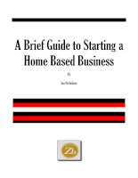 Tài liệu A Brief Guide to Starting a Home Based Business docx