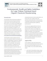 Tài liệu Environmental, Health and Safety Guidelines for Large Volume Petroleum-based Organic Chemicals Manufacturing pptx