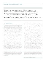Tài liệu Transparency, Financial Accounting Information, and Corporate Governance ppt