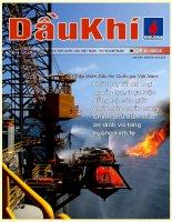 Tài liệu Tạp chí của tập đoàn dầu khí quốc gia Việt Nam - Petrovietnam - Số 8 - 2011 docx