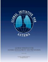 Tài liệu GLOBAL STRATEGY FOR ASTHMA MANAGEMENT AND PREVENTION pdf
