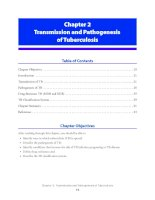 Tài liệu Transmission and Pathogenesis of Tuberculosis docx