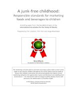 Tài liệu A junk‐free childhood: Responsible standards for marketing foods and beverages to children doc