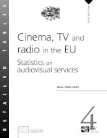 Tài liệu Cinema, TV and radio in the EU Statistics on audiovisual services pptx