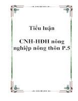 Tài liệu Tiểu luận CNH-HĐH nông nghiệp nông thôn P.5 doc