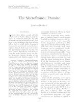 Tài liệu The Microfinance Promise docx