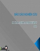 Tài liệu Social media marketing report Viet Nam 2013 ppt
