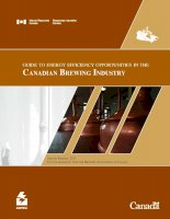Tài liệu Guide to energy efficiency opportunitieS in the Canadian Brewing industry pot