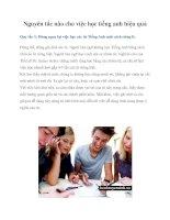 Tài liệu Nguyên tắc nào cho việc học tiếng anh hiệu quả pot