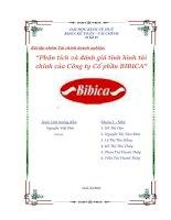 phân tích và đánh giá tình hình tài chính của công ty cổ phần bibica