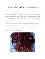 Tài liệu Món ăn bài thuốc từ rau dền đỏ doc