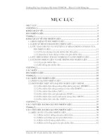 Tài liệu PIN NHIEN LIEU pdf
