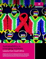 Sustainability in emerging markets: Lessons from South Africa