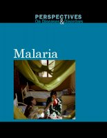 Tài liệu Perspectives on Diseases and Disorders Malaria doc