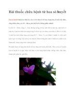 Tài liệu Bài thuốc chữa bệnh từ hoa sò huyết pot