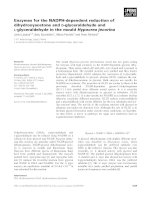 Tài liệu Báo cáo khoa học: Enzymes for the NADPH-dependent reduction of dihydroxyacetone and D-glyceraldehyde and L-glyceraldehyde in the mould Hypocrea jecorina doc
