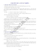 Tài liệu CHUYÊN ĐỀ 1: SỐ TỰ NHIÊN - ĐẠI SỐ LỚP 6 ppt