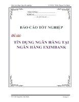 Tài liệu Luận văn: Tín dụng ngân hàng tại ngân hàng Eximbank doc