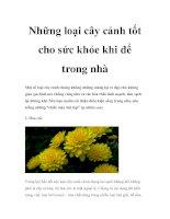 Tài liệu Những loại cây cảnh tốt cho sức khỏe khi để trong nhà pdf