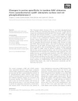 Tài liệu Báo cáo khoa học: Changes in purine specificity in tandem GAF chimeras from cyanobacterial cyaB1 adenylate cyclase and rat phosphodiesterase 2 pptx
