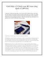 Tài liệu Giới thiệu về Chuẩn mực Kế toán công Quốc tế (IPSAS) pdf
