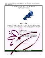 Tài liệu Tiểu luận:Tìm hiểu thực trạng và xây dựng chiến lược Marketing Mix cho sản phẩm nước xả vải mới pdf