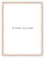 """Tài liệu 11 """"bí mật"""" về trẻ sơ sinh pdf"""