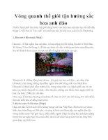 Tài liệu Vòng quanh thế giới tận hưởng sắc hoa anh đào pdf