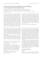 Tài liệu Báo cáo khoa học: A role for the intersubunit disulfides of seminal RNase in the mechanism of its antitumor action docx