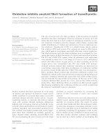 Tài liệu Báo cáo khoa học: Oxidation inhibits amyloid fibril formation of transthyretin ppt