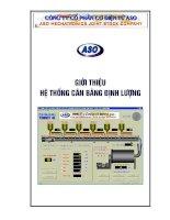 Tài liệu Giới thiệu Đồ án điều khiển logic, Hệ thống điều khiển tự động, cân bằng định lượng , phương pháp grapect, pptx