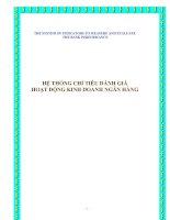 Tài liệu HỆ THỐNG CHỈ TIÊU ĐÁNH GIÁ HOẠT ĐỘNG KINH DOANH NGÂN HÀNG doc