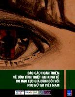 Tài liệu Báo cáo hoàn thiện về ước tính thiệt hại kinh tế do bạo lực gia đình đối với phụ nữ tại Việt Nam ppt