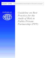 Tài liệu Guideline on Best Practice for the Audit of Risk in Public/Private Partnership (PPP) docx